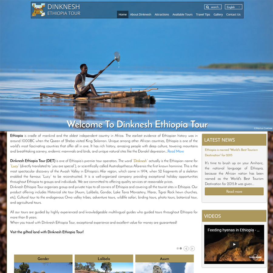 Website Design Company in Ethiopia, Website Development Service in