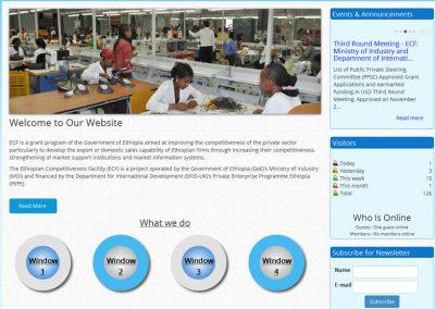 Ethiopian Competitiveness Facility (ECF)