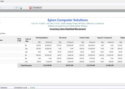 Inventory stock system software developer supplier company in ethiopia - item movement report - Epion Computer Solutions