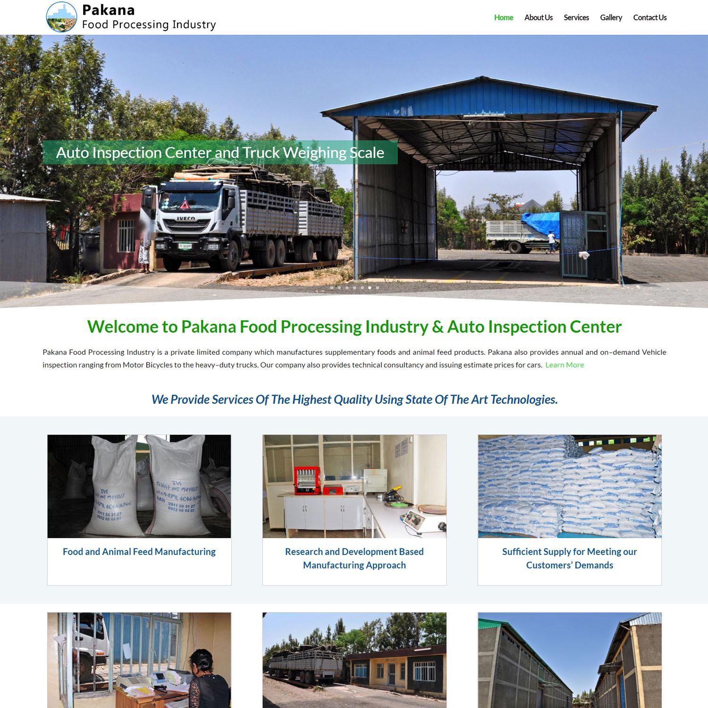 Website Design & Software Development Company in Addis Ababa